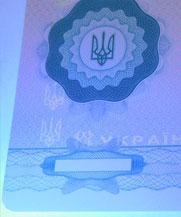 Диплом - свечение УФ (Берегово)